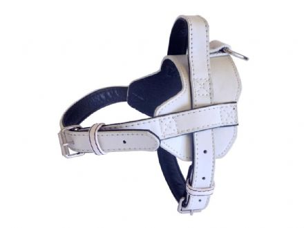 Fusion White Harness -Medium
